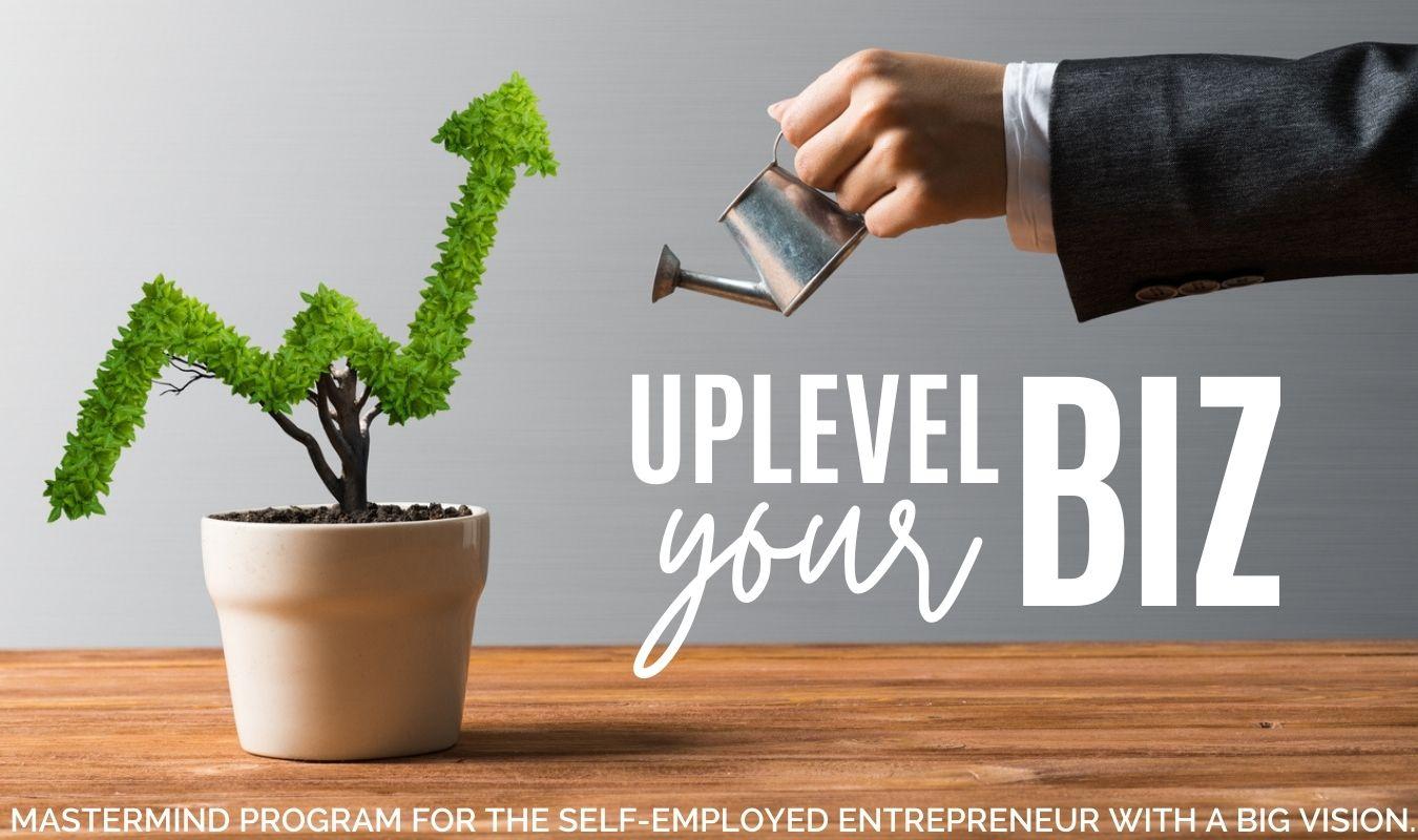 Uplevel Your Biz: A Mastermind program for self-employed entrepreneurs with a big vision.